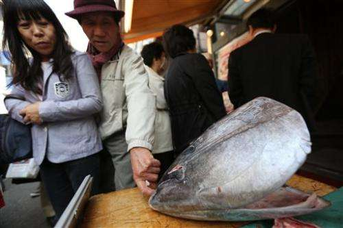 Fisheries to cut catch of endangered bluefin tuna