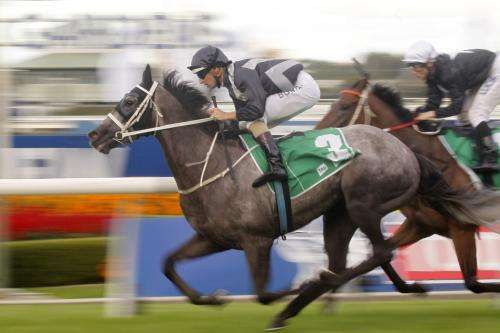 How to hit the genetic jackpot and breed a Melbourne Cup winner