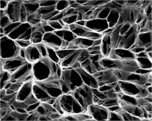 Nanotubes help healing hearts keep the beat