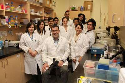 New approaches to cell study contributes to cancer research