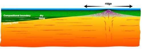 New study reveals insights on plate tectonics