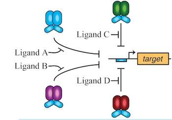 New tools advance bio-logic