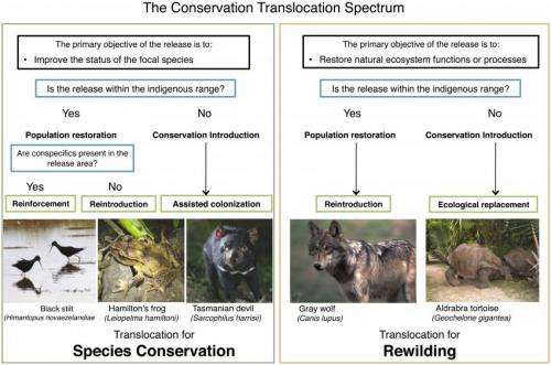 No returning to Eden: Researchers explore how to restore species in a changing world