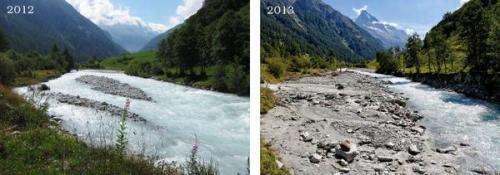 Pebbles that disrupt landscapes