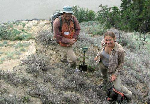 Prehistoric volcanic eruption leaves intercontinental footprint