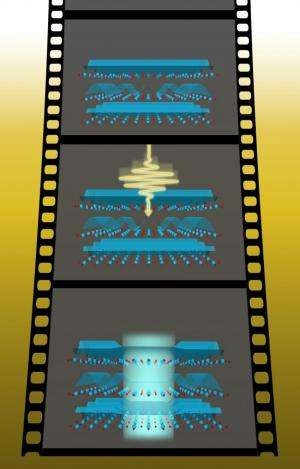 Scientists capture ultrafast snapshots of light-driven superconductivity