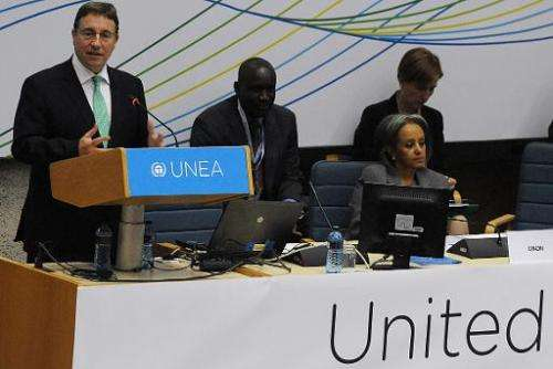 United Nations Environment Programme (UNEP) Achim Steiner (L) delivers a speech during the opening of the First United Nations E
