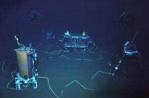 U.N. task force says new ocean telecom cables should be 'green'