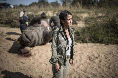 Vietnamese pop star Hong Nhung fights back tears as she stands near the carcass of a white rhino in the Kruger National Park on