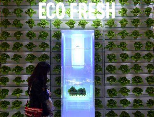 A woman looks at an Eco-Fresh fridge system at the booth of Panasonic during the consumer electronics trade fair in Berlin Septe