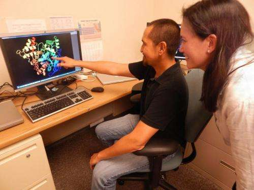 Supercomputers link proteins to drug side effects