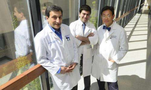 Enzyme helps stem cells improve recovery from limb injuries