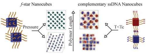 Researchers show polymerized nanocubes form complex structures
