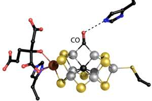 Researchers elucidate how a nitrogen-fixing enzyme also produces hydrocarbons