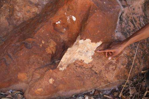 Australian rock art is threatened by a lack of conservation