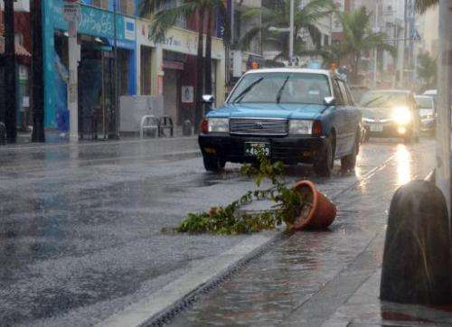 Cars drive past a potted plant blown over by strong winds caused by Typhoon Vongfong in Naha, Japan's southern Okinawa island on
