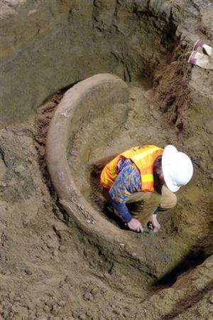 Mammoth tusk lifted from Seattle construction pit