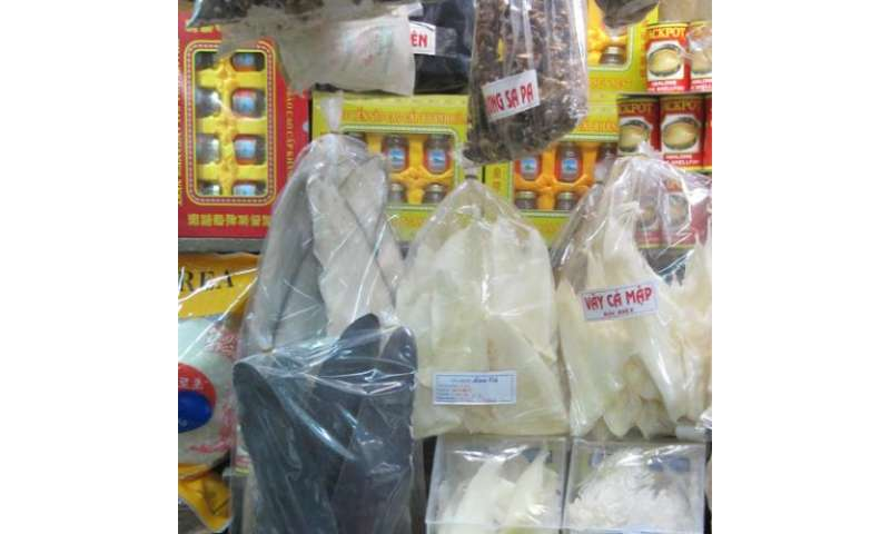 Moratorium on wildlife consumption issued for Vietnamese New Year