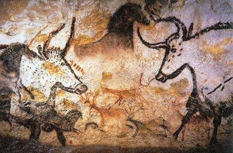 More questions than answers as mystery of domestication deepens