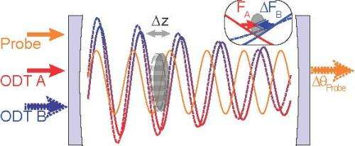 Not much force: Berkeley researchers detect smallest force ever measured