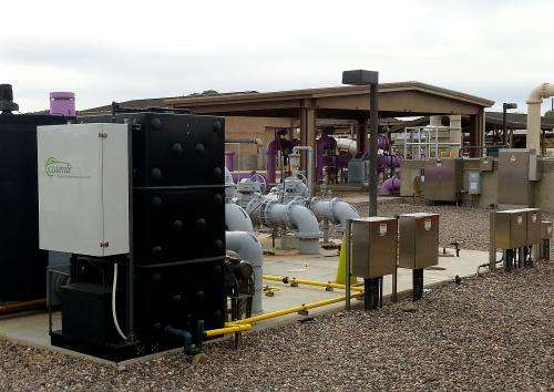 Removing odor from wastewater using bacteria