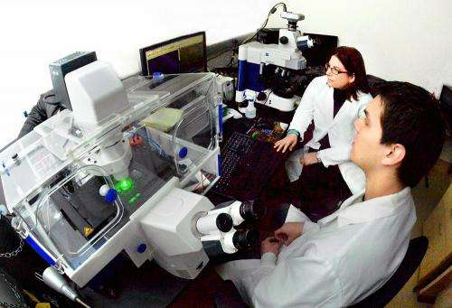 Seizing control of brain seizures