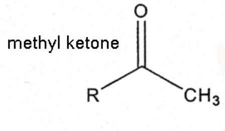 Sweet smell of success: Researchers boost methyl ketone production in E. coli
