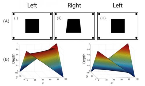Understanding ambiguities in depth perception