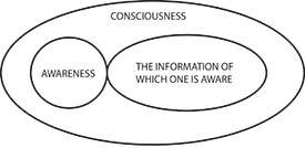 Unpacking the toolkit of human consciousness