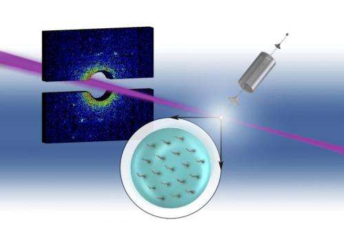 Researchers map quantum vortices inside superfluid helium nanodroplets