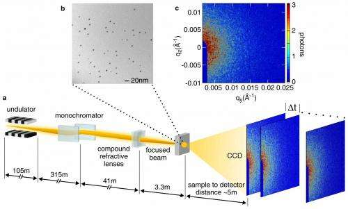 Experiment shows potential of X-ray laser to study complex, poorly understood materials