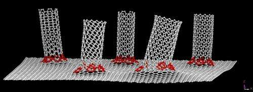 Graphene/nanotube hybrid benefits flexible solar cells