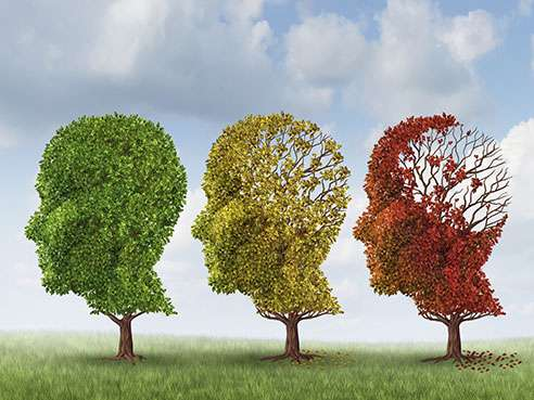 Personalized dementia risk assessment now available