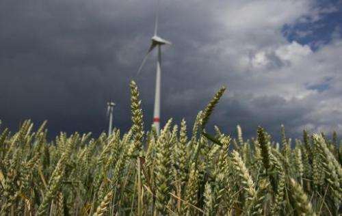 Wind turbines operate near a barley field in Feldheim