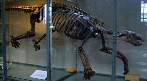 Researchers discover evidence in bones that shows ancient sloths returned to the sea