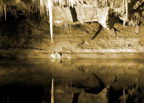 Stalactites, tree rings considered for climate clues
