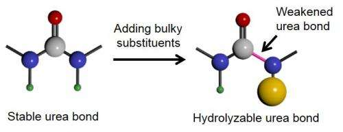 University of Illinois researchers develop inexpensive hydrolysable polymer