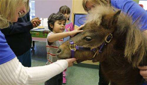 Horse trots into hospital: It's therapy, no joke (Update)