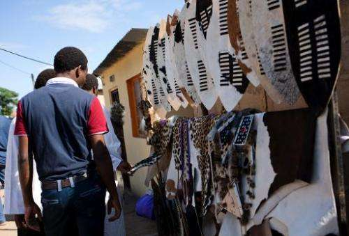 Members of the Shembe Church (Nazareth Baptist Church), a traditionalist Zulu church, check out leopard skins in Durban, on Janu