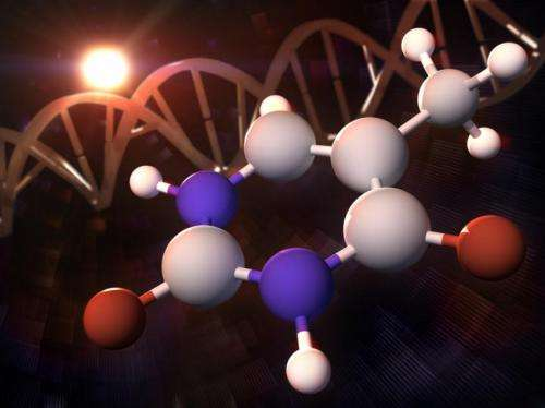 Scientists use X-rays to look at how DNA protects itself from UV light