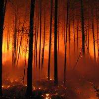 Climate change to increase forest fire danger in Europe