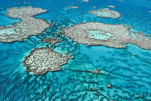 An aerial view of the Great Barrier Reef off the coast of Australia, taken August 1, 2013 by the Australian Institute of Marine