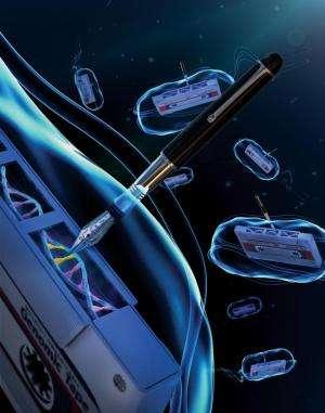 Bacteria become 'genomic tape recorders'
