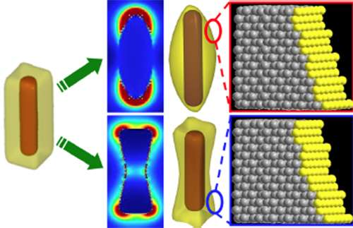 Opening a wide window on the nano-world of surface catalysis