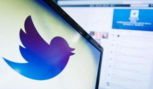 A photo taken on September 11, 2013 shows the logo of Twitter is displayed on a computer screen in London