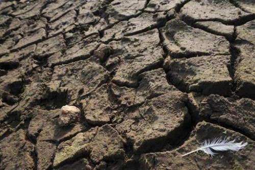 File photo taken in November 2011 shows dry soil at the Drennec lake in western France