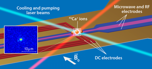 Researchers find qubits based on trapped ions offer a promising scalable platform for quantum computing