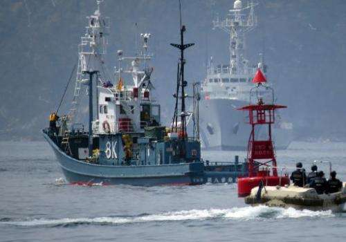 In this file photo, a Japanese whaling fleet (L) departs Ayukawa port in Ishinomaki City, on April 26, 2014