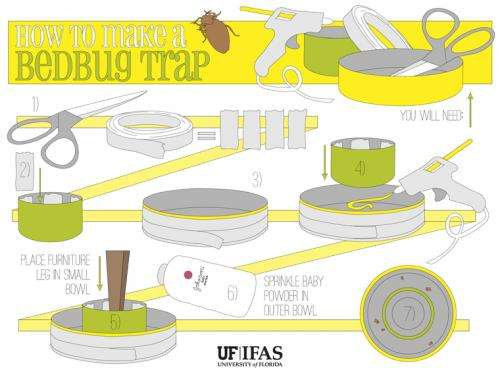A better bedbug trap made from