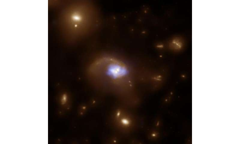 Accreting supermassive black holes in the early universe